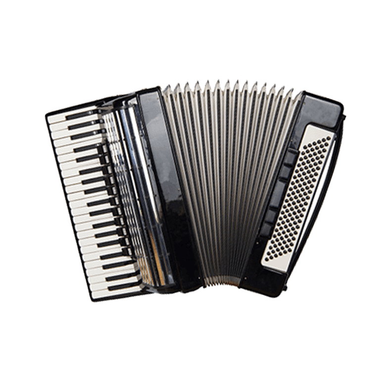 Picture for category Accordion