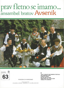 Picture of Big radio hits of the Avsenik Quintet nr.63