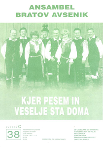 Picture of Big radio hits of the Avsenik Quintet nr.38