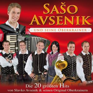 Picture of Die 20 größten Hits